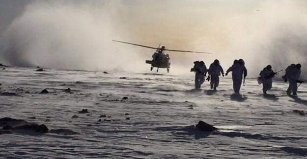 Havadan ve karadan büyük operasyon başladı