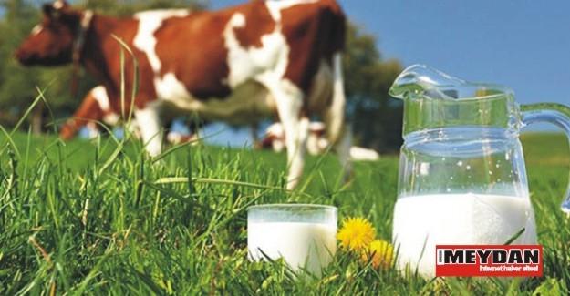 Süt üreticilerinin sabrı taştı
