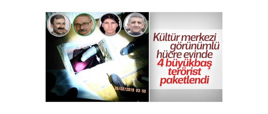 İstanbul'da 4 büyükbaş terörist paketlendi