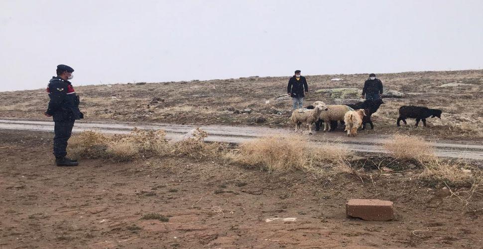 Aksaray'da çiftçilere yem karma makinası dağıtıldı