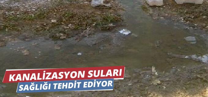 Kanalizasyon suları sağlığı tehdit ediyor
