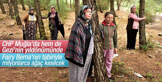 Muğla'da CHP'li belediye ağaç kesimi yapacak