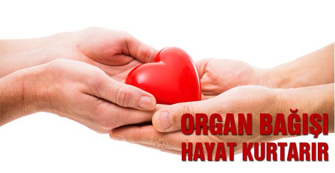 Organ bağışı hayat kurtarır