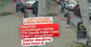kadına yumruk atan mahlukat CHP'li çıktı