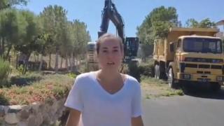 Gezinin ünlü isimleri İzmir'deki ağaç katliamına sessiz