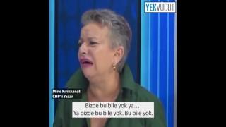 Mine Kırıkkanat, Türk milletine hakaret etti